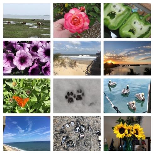 inspiration photos